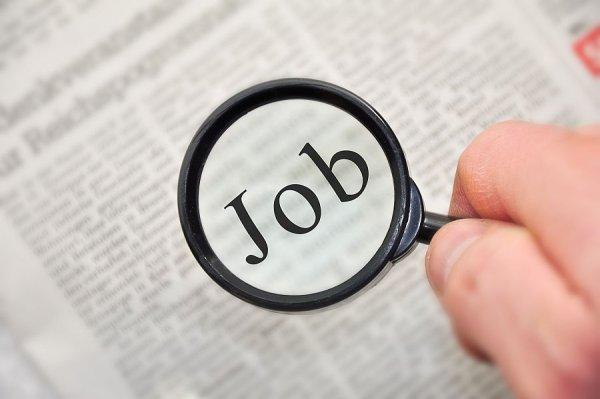 Lipne oferty pracy?